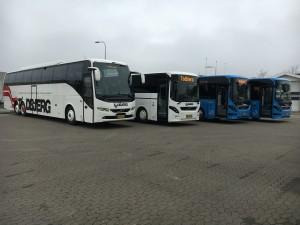 århus turistbusser